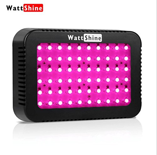 300W LED Grow Light Hydroponics System Wattshine P300